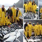 7-27-2016 Fish fish fish more fish