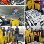 8-12-2016 Slammin salmon and releasing sharks