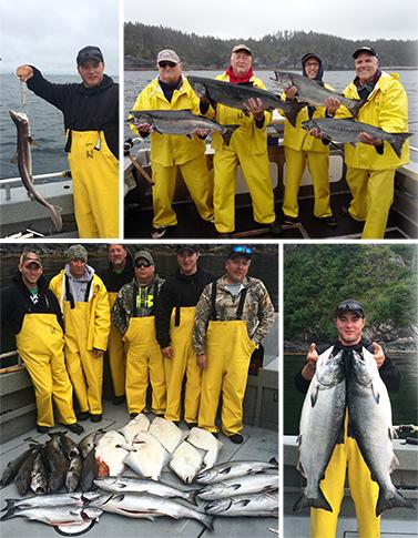 8 5 2015 Big fish little fish king fish dog fish