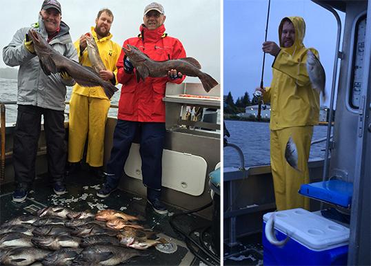 9 9 2016 Live bait gets you spunky lingcod on a stormy day