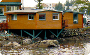 Cabin from the water