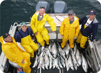 Group of Coho caught with Wild Strawberry Lodge on Sitka waters