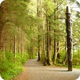 Sitka national historical park, sitka ak, alaska, totem poles, indiginous
