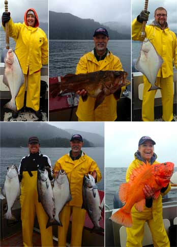7 2 13 Raining fish on a rainy day