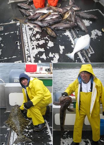 9 9 2012 A bottom fishing bonanza today