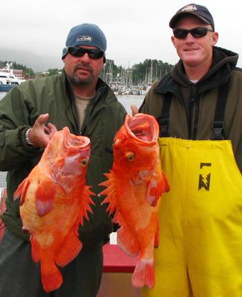 06 11 2009 Two Vibrant Yelloweye Rockfish