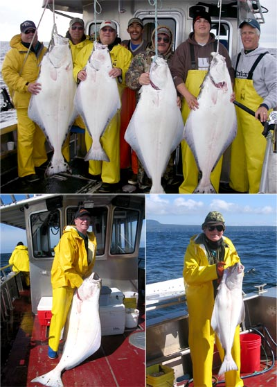 09 01 2009 It is Halibut Heaven in Sunny Sitka today