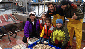 Our Clamming Adventure Sitka Alaska