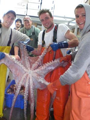 Crew holding an Alaskan octopus