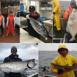 05-14-2017 Limits of Kings and Halibut on a rough day!
