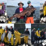 06-05-2018 Super sized ling tops a fantastic fishing day!